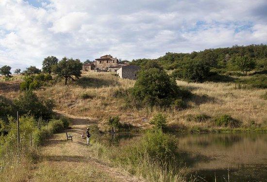 Agriturismo Podere Tegline: Blick vom Teich
