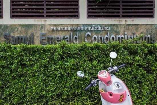 Samui Emerald Condotel : Samui Emerald