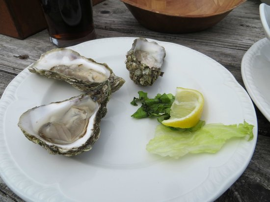 The Oystercatcher: Ballimore Oysters
