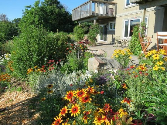 Wild Apple Hill BnB: Beautiful back yard, right off the king suite.