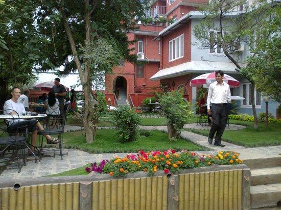 Hotel Blue Horizon : Disfrutando del jardin interno