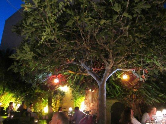 Restaurant Es Moli de Santanyi : inside terrace