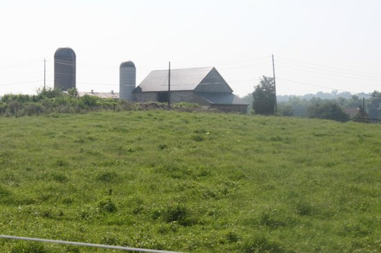 Eby Farm Bed & Breakfast: Pasture and family barn
