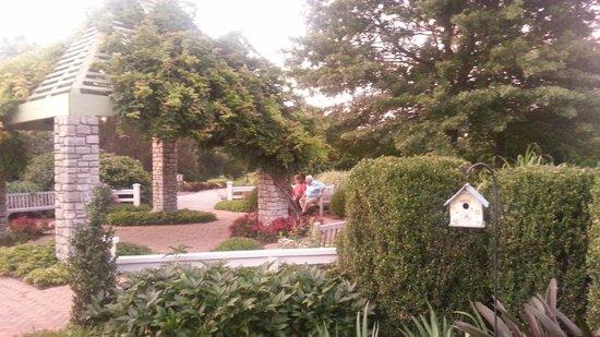 The Arboretum : 5