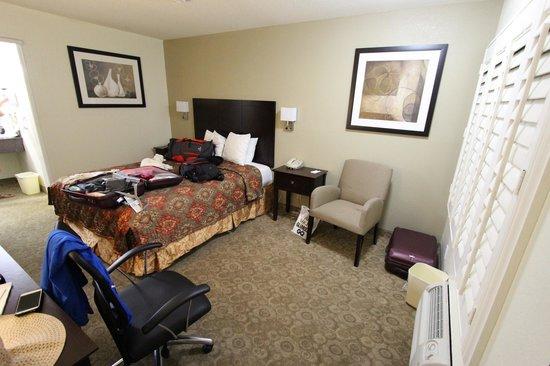Rodeway Inn Convention Center: La chambre