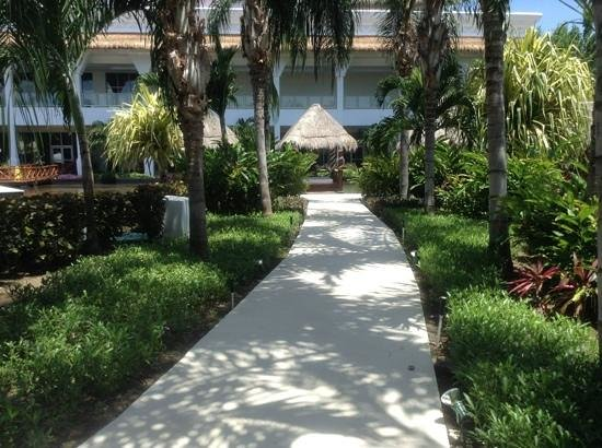 Grand Riviera Princess All Suites Resort & Spa: Add a caption