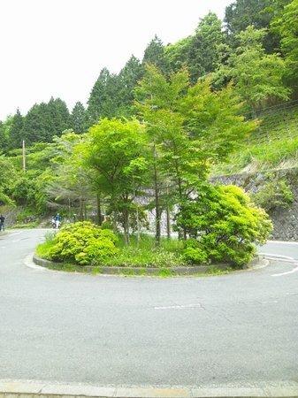 Yabitsu Pass: ヤビツバス停
