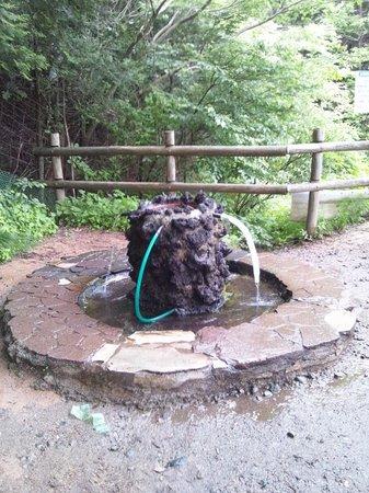 Yabitsu Pass: 護摩屋敷湧水
