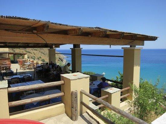 Barbarola terrace