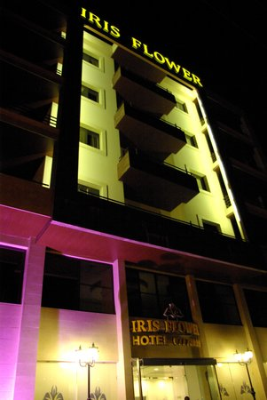 Iris Flower Hotel: Hotel at night