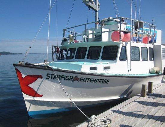 Diver Ed's Dive-In Theater: Starfish Enterprise