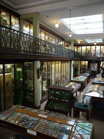 Wisbech & Fenland Museum: Exhibits