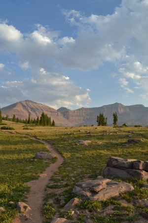 High Uintas Wilderness Area