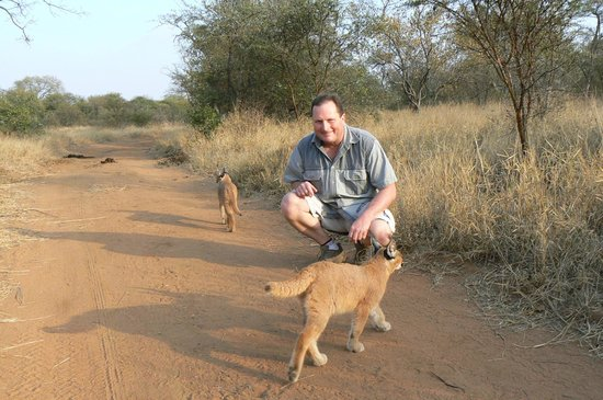 Tshukudu Bush Camp: Walking with caracals