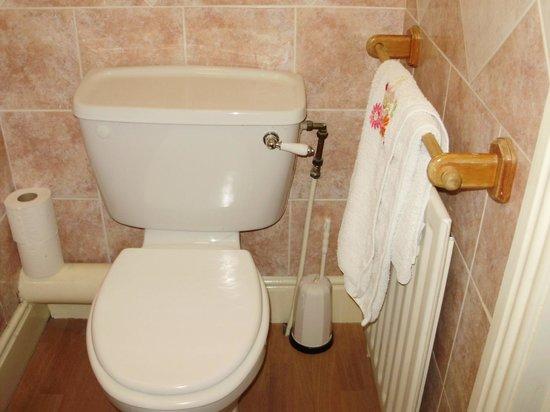 Adare Bed & Breakfast: WC. Propre.