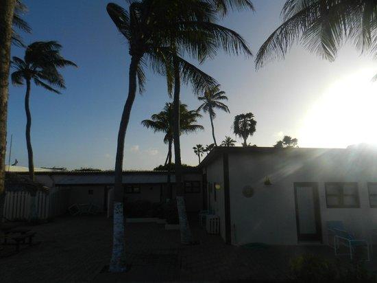 Aruba Beach Villas: Parte tracera de la villa