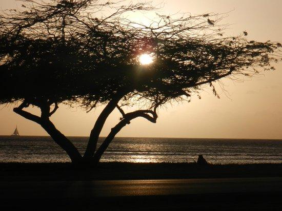 Aruba Beach Villas: Atardecer frente a la villa