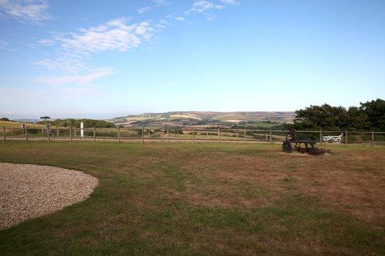 Hermitage Court Farm: Patio view