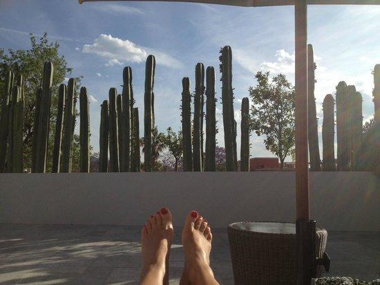 Hotel Matilda: En la terraza del cuarto