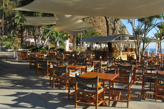 Descanso Beach Club Dining: Bar and Restaurant area at Descanso Beach