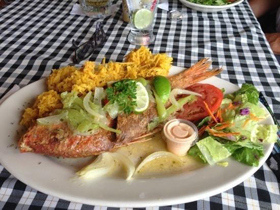 Restaurante el otoao utuado webcam