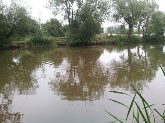 Watersmeet Hotel & Angling Centre: Middle pond
