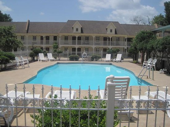 Queen of Diamonds Inn: Nice pool !!
