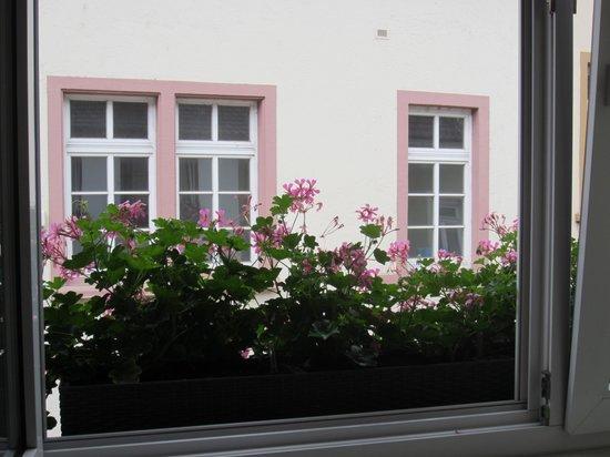 Hotel Goldene Rose : The flower box on my window