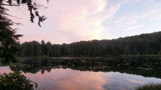 Half Moon State Park 사진
