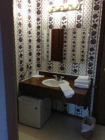 The Bavarian Inn: Vanity with tiny fridge