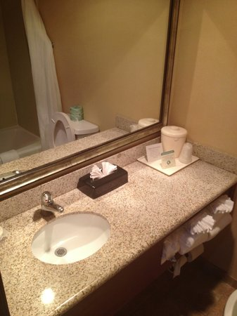 Comfort Suites Outlet Center : clean updated bathroom