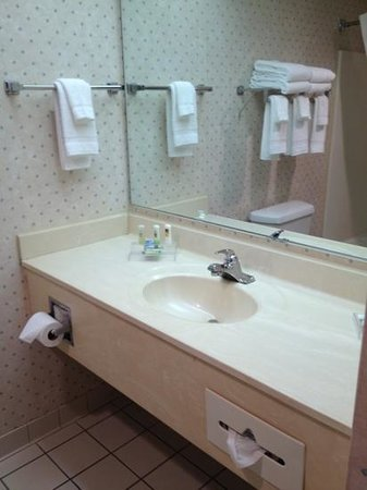 Country Inn & Suites By Carlson, Appleton: clean