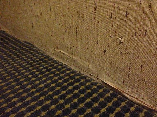 Ramada Vallejo Near Six Flags Discovery Kingdom: Bad wallpaper repair