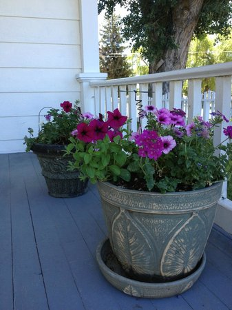 Sweet Virginia's Bed and Breakfast: Front porch flowers