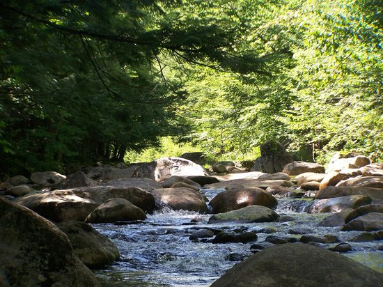 Lost River Valley Campground: river behind campsite