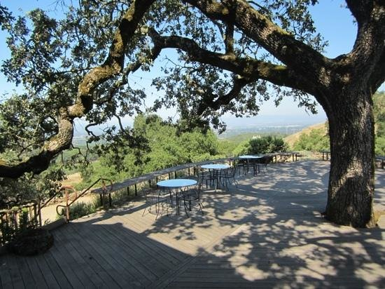 Paradise Ridge Winery: Tables with a view