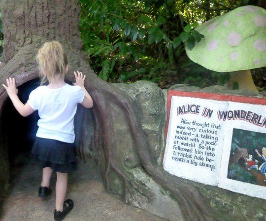 Enchanted Forest Theme Park: Alice log tunnel