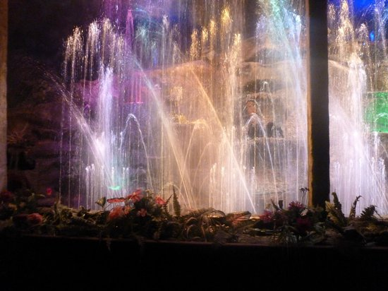 Enchanted Forest Theme Park: A 7 minute water show every 8 minutes