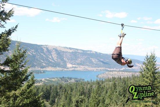 Oyama Zipline Adventure Park: The professional pics they take...