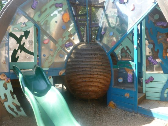 Gilbert House Children's Museum: Plant cell climbing structure