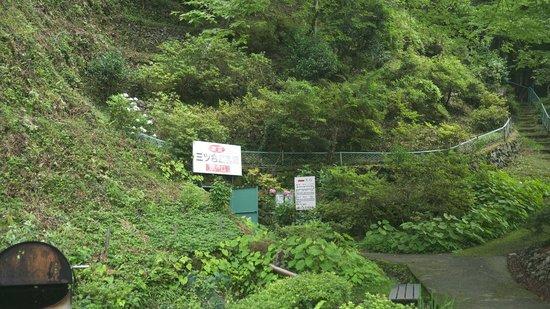 Mitsugo Limestone Cave