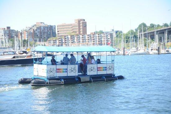 The Aquabus: Granville Island to Hornby Street (Aquabus)