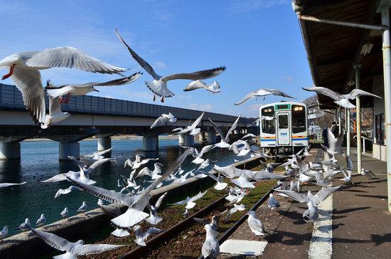 Tenryu Hamanako Railway: 浜名湖佐久米駅