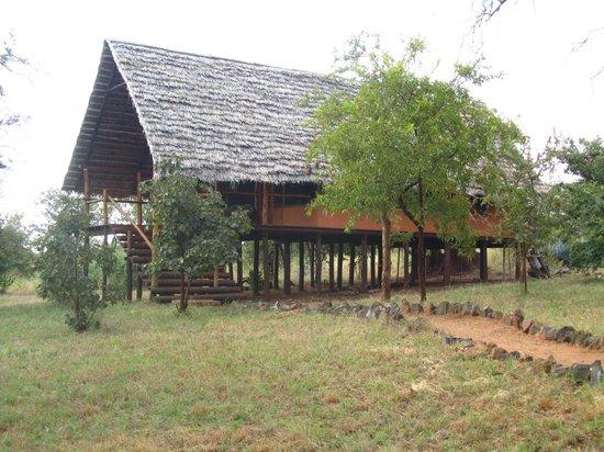 Kikoti Safari Camp: All individual tents are on stilts.