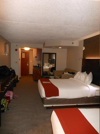 Holiday Inn Express & Suites Pittsburgh-South Side: Room