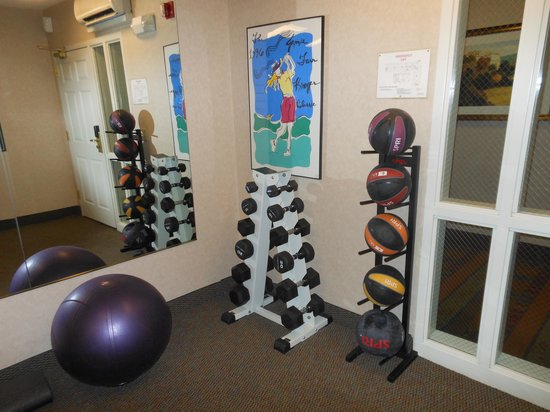 Homewood Suites by Hilton Toledo-Maumee : Gym
