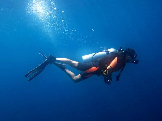 Blue Orchid Divers