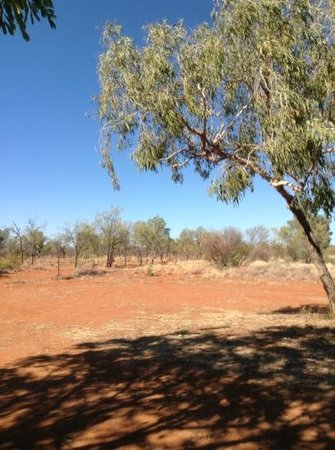 Barkly Homestead : barkly camping ground