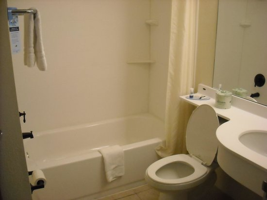 Microtel Inn & Suites by Wyndham Eagle Pass: bathroom single room