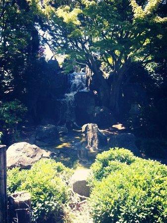 Japanese Friendship Garden: The water fall